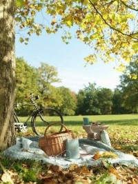 Bicycles + picnics (via ????? ??? ??????? ??? ) | Picnics