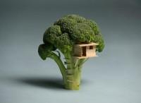 Broccoli House | Colossal — Designspiration
