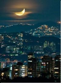 celestial / LA Moon