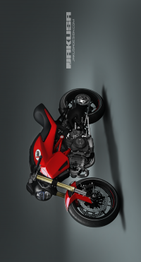 Ducati Monster Jakusa on