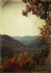 Falling into Autumn / Appalachian autumn