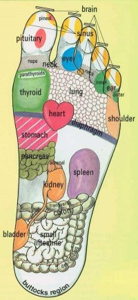 Foot Reflexology. massage the part of your foot that ... | Primp