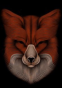 Fox on