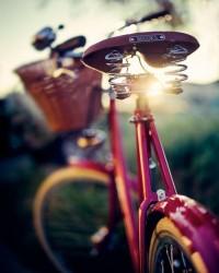 fucshia...angiel | Bicycles