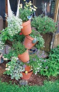 Garden / Clay pots in the yard