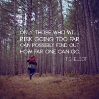 Only those who will risk going too far can possibly find out how far one can go. Quote by T.S. Eliot.
