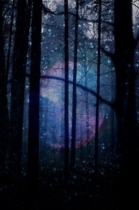 Imagery of a Dream / Fantasy