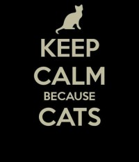 Keep Calm / Cats n Cats