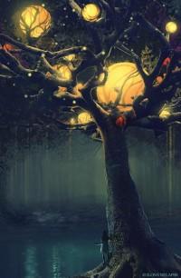 light / Tree of Moons