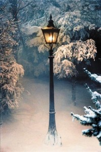luminous / snowy nights makes a perfect picture....