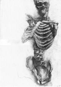 paul-skelett2-web.jpg (1006×1433)