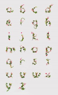 photographic alphabet of flowers! — Designspiration