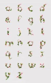 photographic alphabet of flowers! — Designspiration