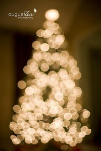 Photography Tips and Tricks / Taking Pictures of your Christmas Tree « August Tea Photography, Detroit Family Photographer