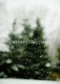 Photos / Merry Christmas — Designspiration