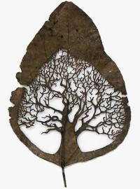 Products & Designs I Love / Lorenzo Duran...beautiful art carved into an ordinary leaf....looks so faerielike!