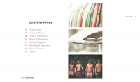 Quiksilver Annual Report on