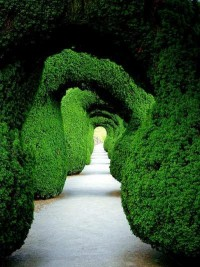 stunning natural archway #lifeinstyle ... | Green with envy