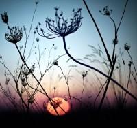 sunset | Fairytales