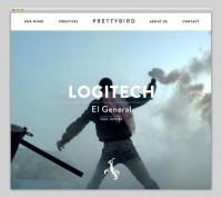 The Web Aesthetic / Prettybird — Designspiration