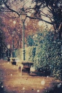 Things That Make You Say AHhhhhh!! / photography, snowy, winter, fall, autumn, street, bench, street lamp, city