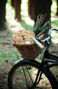 time to pause for an autumn bicycle picnic | Simple Pleasures
