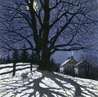 Tree Illustration / Carol Collette.